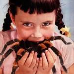 Profilovka od Spider (admin)