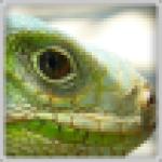 Profilovka od Jiří